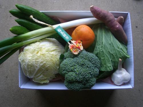 野菜のおたのしみ箱